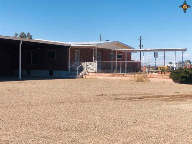 560 SE Okelly Rd, Deming, NM 88030 (MLS #20191210) :: Rafter Cross Realty