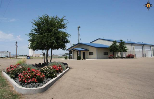 1395 State Road 209, Clovis, NM 88101 (MLS #20193276) :: The Bridges Team with Keller Williams Realty