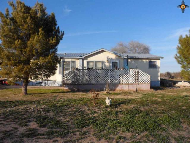 215 & 217 Caddo Rd, Dexter, NM 88230 (MLS #20200325) :: Rafter Cross Realty