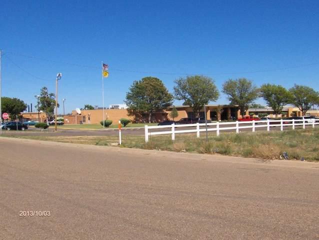 2424 S Jackson, Tucumcari, NM 88401 (MLS #20201602) :: Rafter Cross Realty