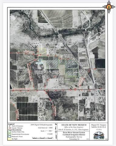 1711 Pecos Hwy, Loving, NM 88256 (MLS #20201862) :: Rafter Cross Realty
