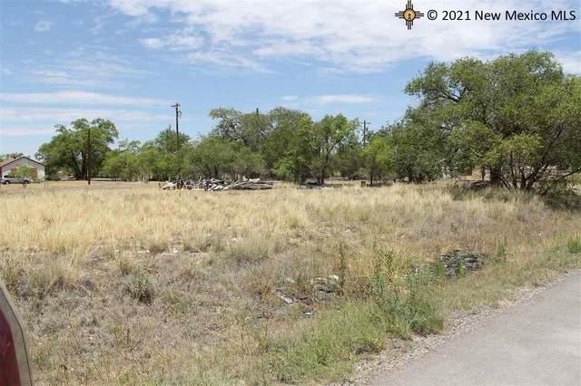 S Bridges, Tatum, NM 88267 (MLS #20203102) :: Rafter Cross Realty