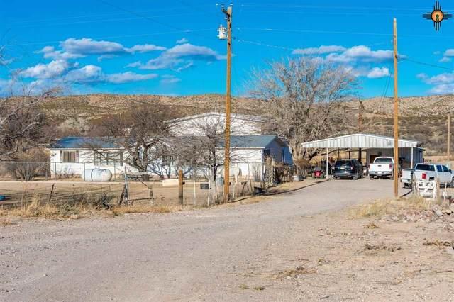 393 Las Palomas Canyon Rd, Las Palomas, NM 87942 (MLS #20203957) :: The Bridges Team with Keller Williams Realty