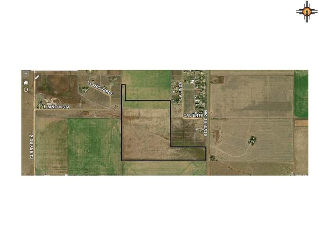 LAND W Nm 209 Between Cr 15 And Cr 16, Clovis, NM 88101 (MLS #20204103) :: Rafter Cross Realty