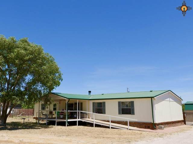 117 E Springwood Drive, Portales, NM 88130 (MLS #20204613) :: Rafter Cross Realty