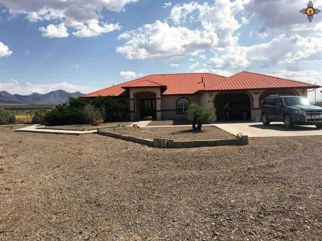 5370 SE San Pedro Rd, Deming, NM 88030 (MLS #20204728) :: Rafter Cross Realty