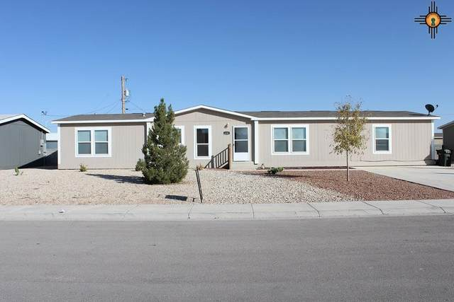 4206 Willow St, Carlsbad, NM 88220 (MLS #20205083) :: Rafter Cross Realty