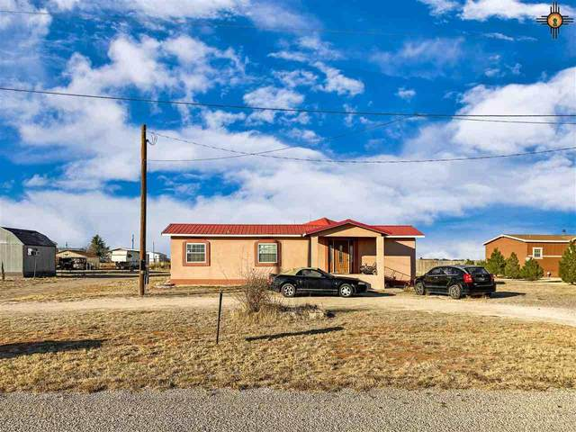 4522 W Georgia, Hobbs, NM 88242 (MLS #20205321) :: Rafter Cross Realty