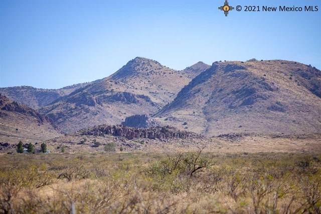 Lot 22 Quail Run, Rodeo, NM 88056 (MLS #20205483) :: The Bridges Team with Keller Williams Realty