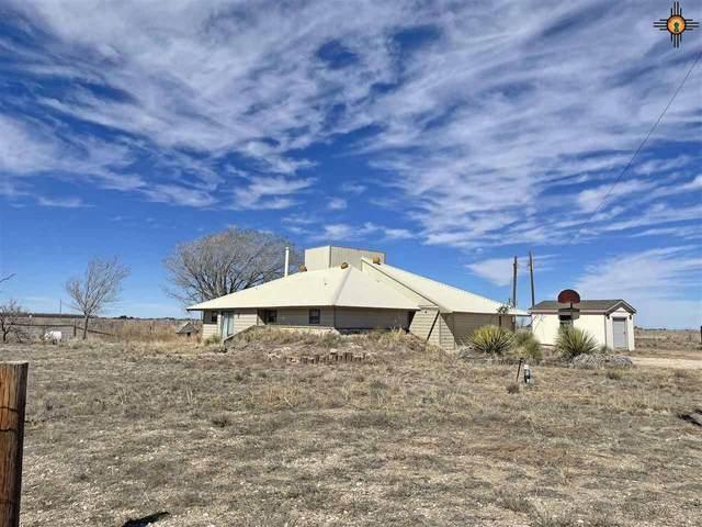 5513 Plains Hwy, Lovington, NM 88260 (MLS #20210735) :: Rafter Cross Realty