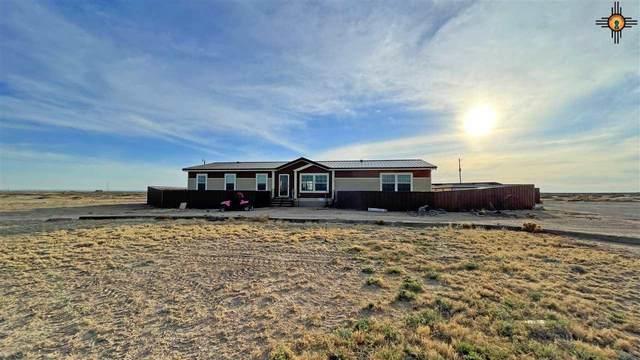 19 Shawnee Ct, Artesia, NM 88254 (MLS #20210992) :: Rafter Cross Realty