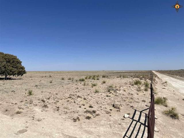 2870 Curry Road 4, Melrose, NM 88124 (MLS #20211421) :: The Bridges Team with Keller Williams Realty