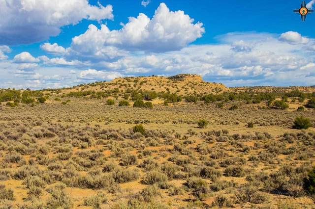 TBD Purty Rock, Gallup, NM 87301 (MLS #20212996) :: The Bridges Team with Keller Williams Realty