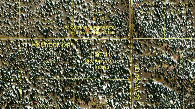 UNKNOWN Elkwood Drive, PIE TOWN, NM 87827 (MLS #20213060) :: The Bridges Team with Keller Williams Realty