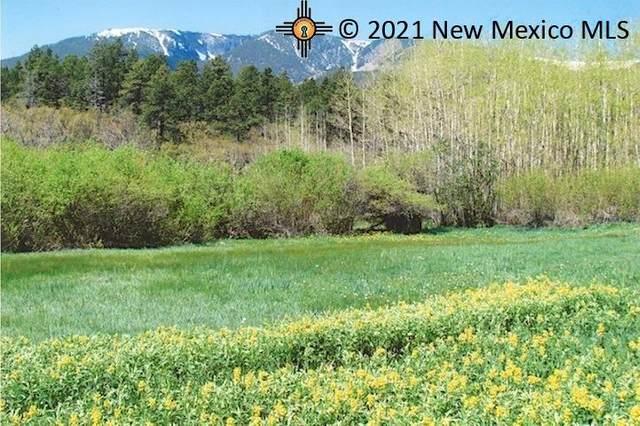 542 Cr 005, Mora, NM 87732 (MLS #20213279) :: The Bridges Team with Keller Williams Realty