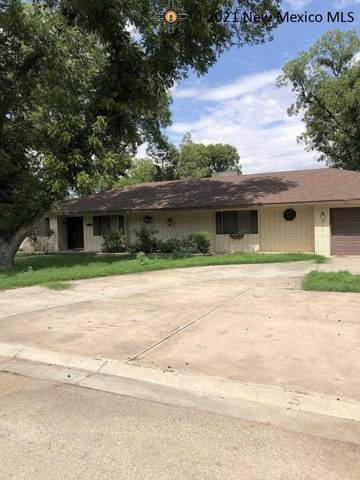 1506 Orchard Manor Court, Carlsbad, NM 88220 (MLS #20213655) :: The Bridges Team with Keller Williams Realty