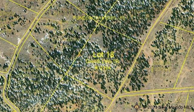 136 Ponderosa View Loop, PIE TOWN, NM 87827 (MLS #20214018) :: The Bridges Team with Keller Williams Realty