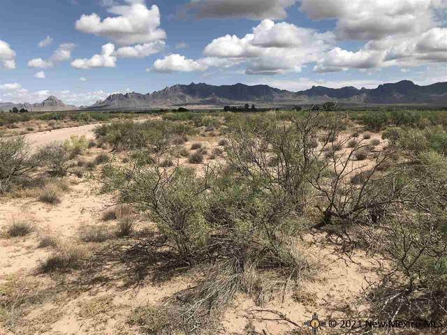 0000 SW Acoma, Deming, NM 88030 (MLS #20215243) :: The Bridges Team with Keller Williams Realty