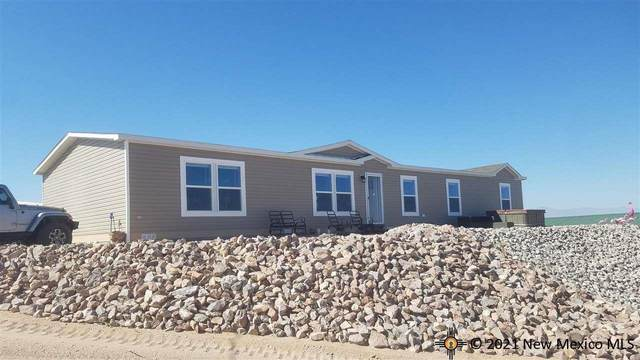 307 Lions Beach, Elephant Butte, NM 87935 (MLS #20215539) :: The Bridges Team with Keller Williams Realty