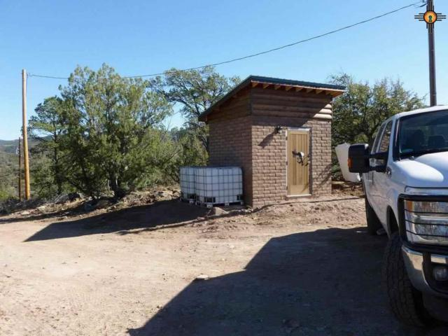 45 Safire Rd., Reserve, NM 87830 (MLS #20154493) :: Rafter Cross Realty