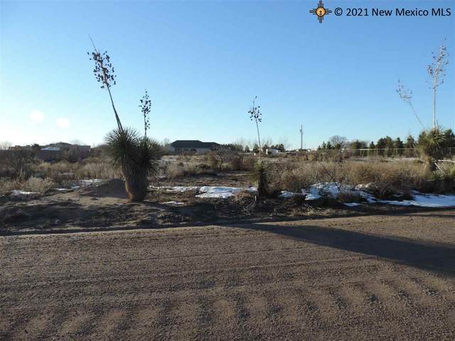 0000 Majestic View, Deming, NM 88030 (MLS #20160011) :: The Bridges Team with Keller Williams Realty