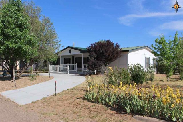 10 Pineway Blvd, Clovis, NM 88101 (MLS #20175818) :: Rafter Cross Realty