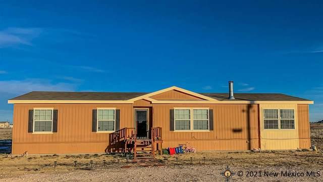 2822 N Six Shooter Rd, Lovington, NM 88260 (MLS #20200318) :: Rafter Cross Realty