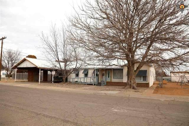 204 Torreon, Clovis, NM 88101 (MLS #20210267) :: Rafter Cross Realty