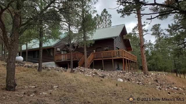 59 Elk View Circle, Quemado, NM 87829 (MLS #20213722) :: The Bridges Team with Keller Williams Realty