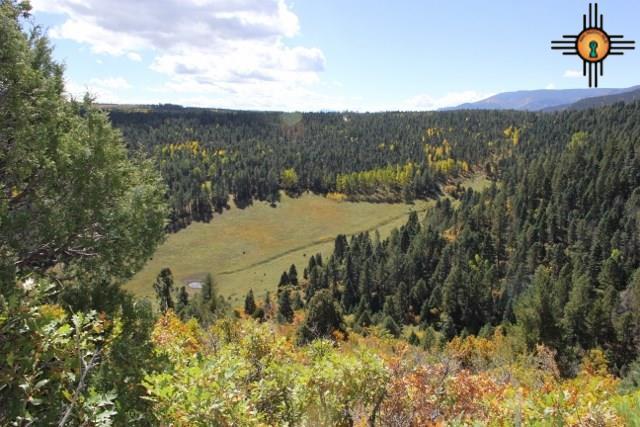 TBD Highway 518, Holman, NM 87723 (MLS #20165675) :: Rafter Cross Realty