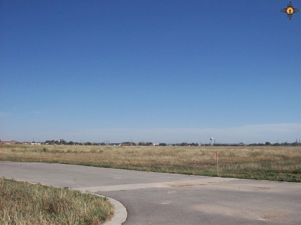 1010 Pistachio Trail - Photo 1