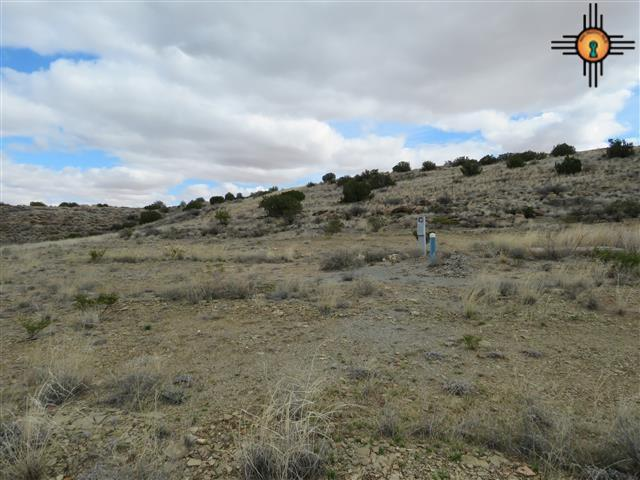 Lot 1 Champagne Hills Rd Rdl, Elephant Butte, NM 87935 (MLS #20170710) :: Rafter Cross Realty