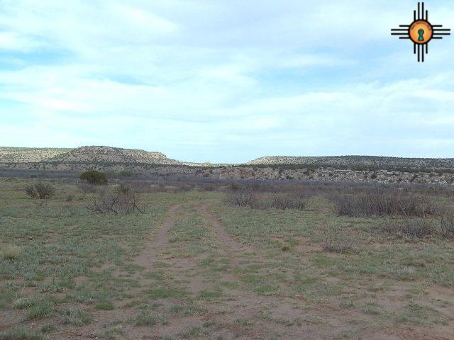 24 S Briarcliff Rd, Trementina, NM 88431 (MLS #20172030) :: Rafter Cross Realty