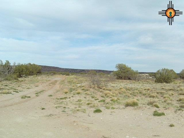 18 S Briarcliff Rd, Trementina, NM 88431 (MLS #20172032) :: Rafter Cross Realty