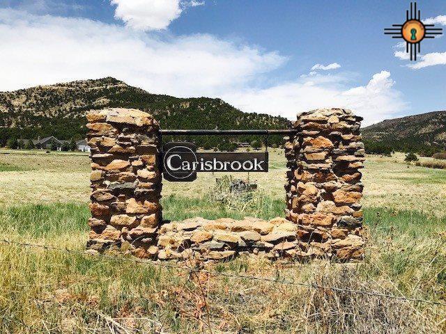 Carisbrook, Raton, NM 87740 (MLS #20172249) :: Rafter Cross Realty
