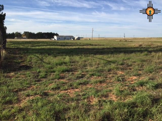 Lot 3 Sagebrush Rd, Hobbs, NM 88240 (MLS #20175227) :: Rafter Cross Realty
