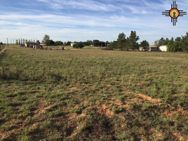 Lot 5 Shinnery Lane, Hobbs, NM 88240 (MLS #20175228) :: Rafter Cross Realty