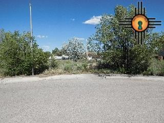 1911 Meritt Lane, Gallup, NM 87301 (MLS #20181072) :: Rafter Cross Realty