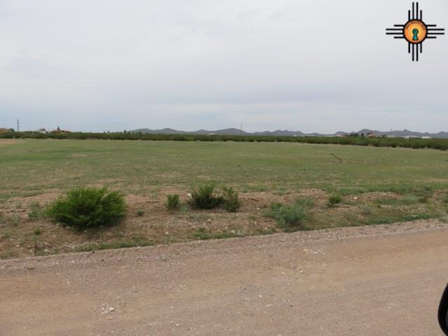 00 Eastside Addition, Columbus, NM 88029 (MLS #20182407) :: Rafter Cross Realty