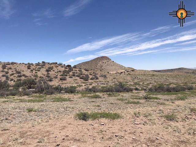 4 Nana Trail, Hillsboro, NM 88042 (MLS #20182569) :: Rafter Cross Realty
