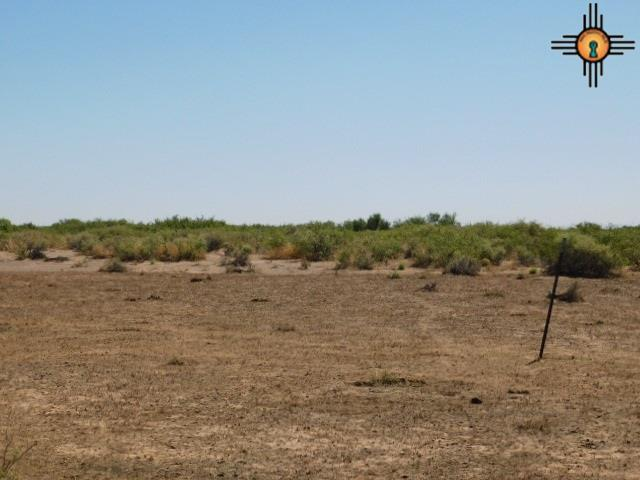 Sundance Ranches Bk 2 Lot 34, Deming, NM 88030 (MLS #20182920) :: Rafter Cross Realty