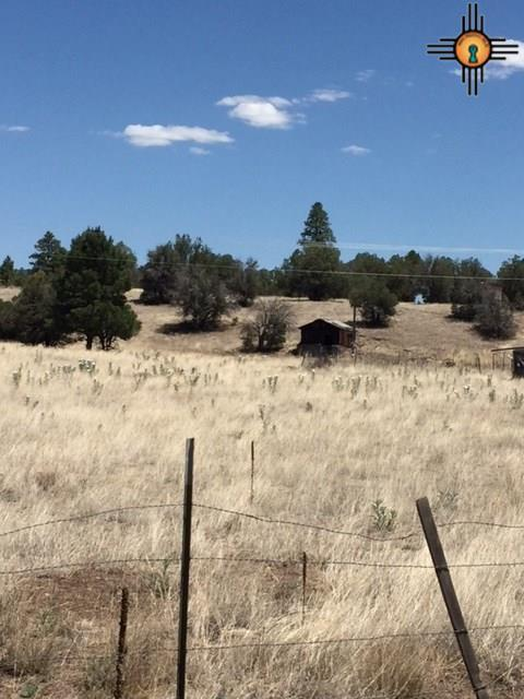 33 Dove Valley Lane, Reserve, NM 87830 (MLS #20183116) :: Rafter Cross Realty