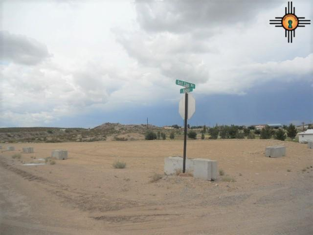 Kopra & Golf Club Rd., Truth Or Consequences, NM 87901 (MLS #20183305) :: Rafter Cross Realty