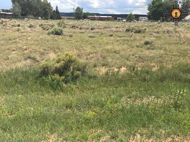 TBD Lilac, Thoreau, NM 87323 (MLS #20184073) :: Rafter Cross Realty