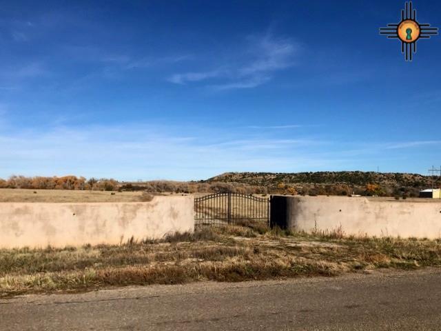 TBD El Llano Road - Photo 1