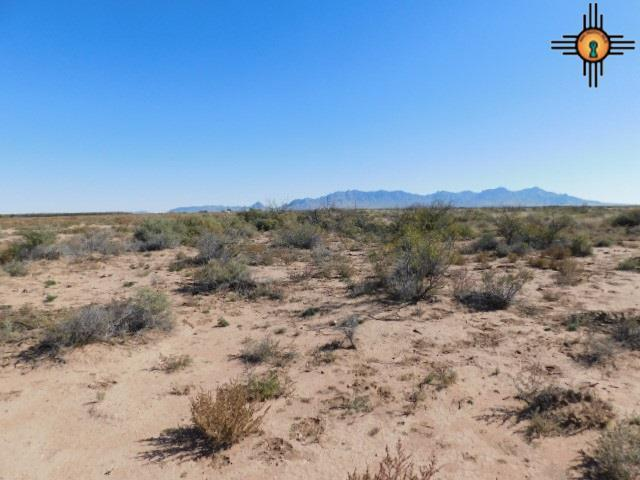 Dr Unit 29, Deming, NM 88030 (MLS #20185233) :: Rafter Cross Realty