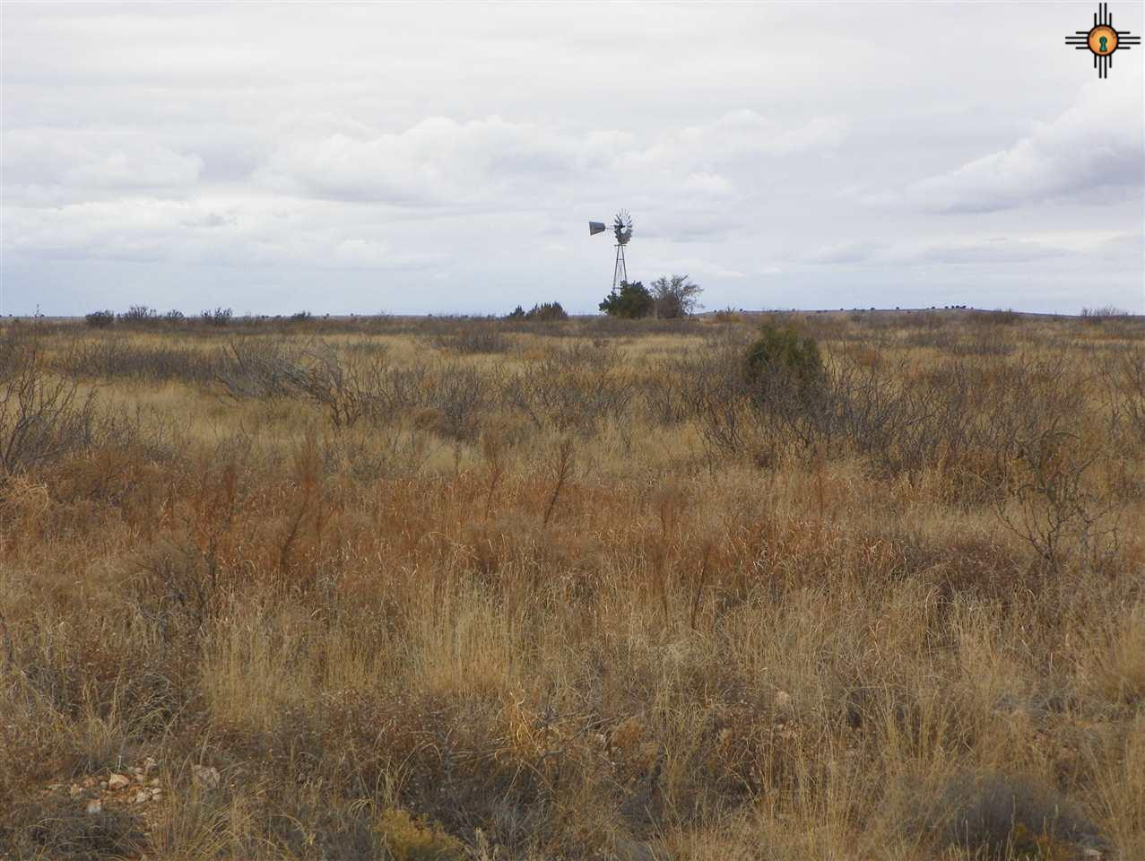 0 River Ranches Road - Photo 1