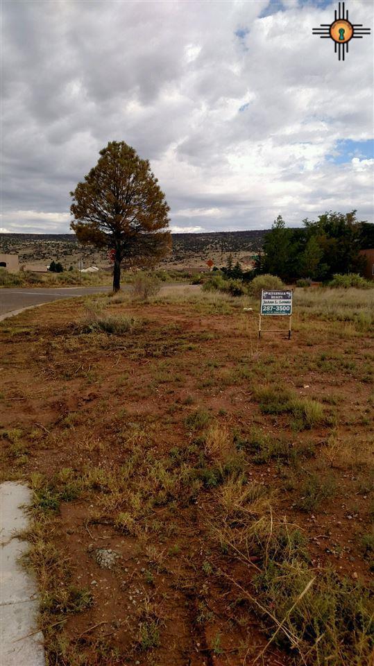 TRACT A Western Terrace, Grants, NM 87020 (MLS #20191165) :: Rafter Cross Realty