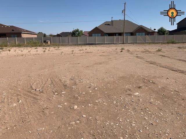 2405 W Bullock Ave, Artesia, NM 88210 (MLS #20193688) :: Rafter Cross Realty