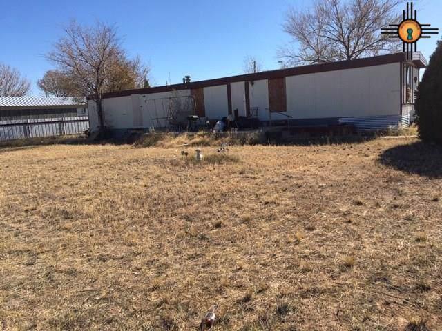 323 W Nebraska, Jal, NM 88252 (MLS #20200192) :: Rafter Cross Realty